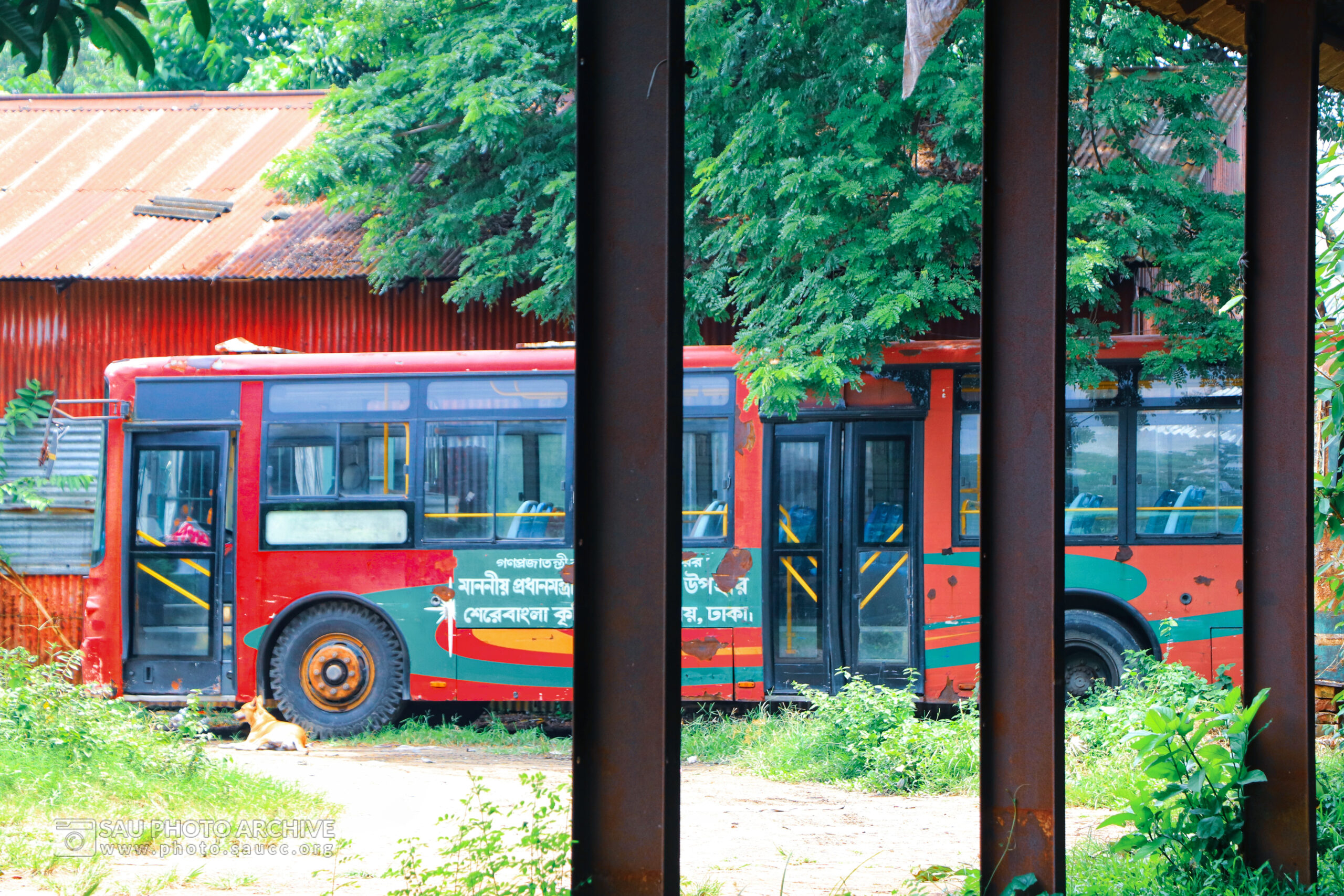 A Scenic photo is captured by Md. Nazmus Sakib Anik at Sher-e-Bangla Agricultural University titled Red Bus of SAU in Garage