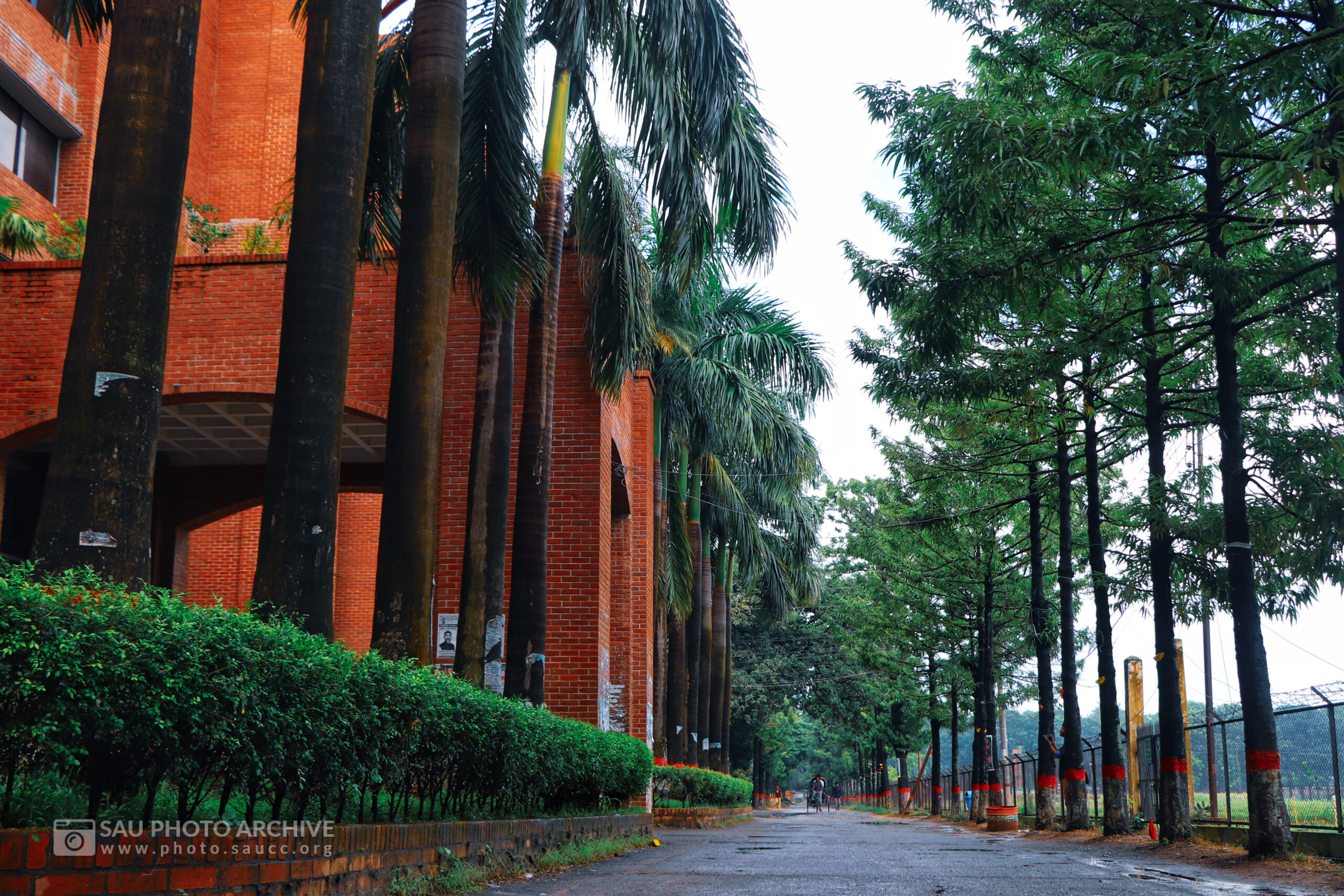 A Road photo is captured by Md. Nazmus Sakib Anik at Sher-e-Bangla Agricultural University titled Road in front of Administrative Building