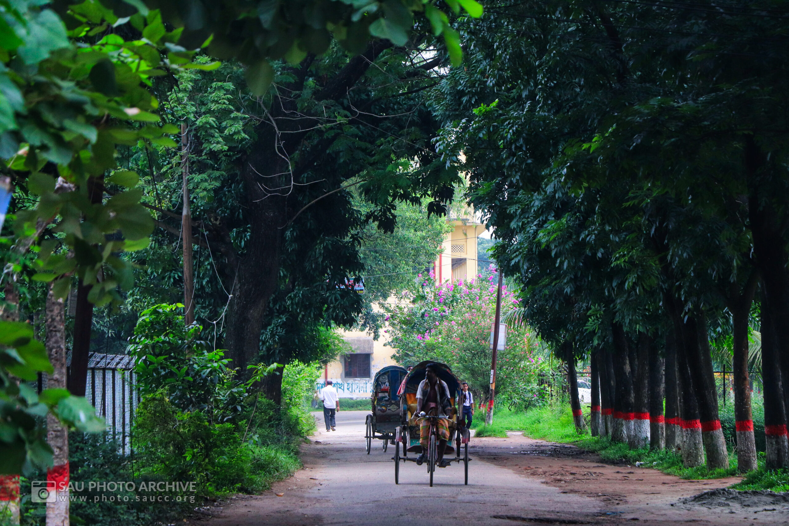 A Road photo is captured by Md. Nazmus Sakib Anik at Sher-e-Bangla Agricultural University titled Road of Agriculture Faculty to Sheikh Kamal Building